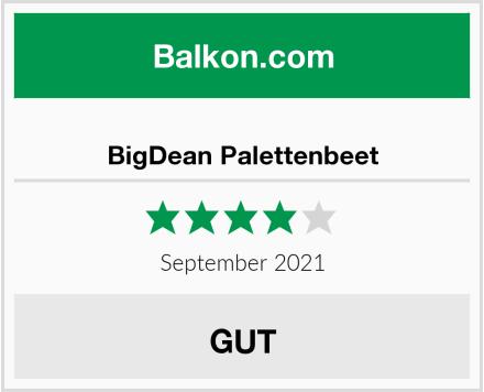 BigDean Palettenbeet Test