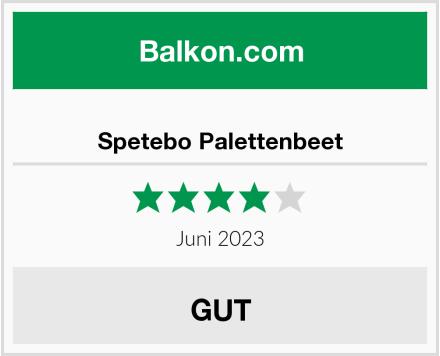 Spetebo Palettenbeet Test