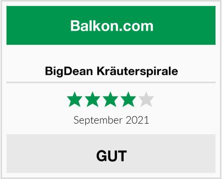 BigDean Kräuterspirale Test