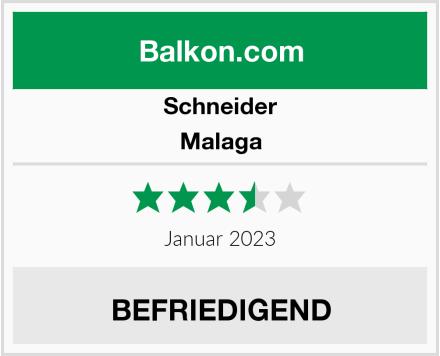 Schneider Malaga Test