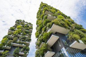 Balkonsichtschutz für Hochhaus mit Pflanzen