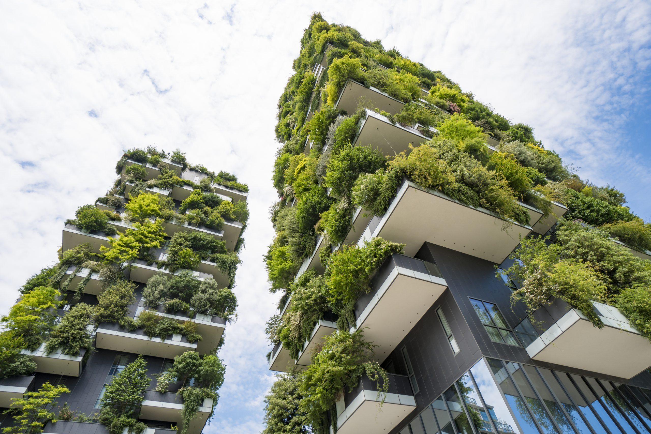 Der Balkon Mit Privatsphare Sichtschutz Mit Pflanzen Balkon Com