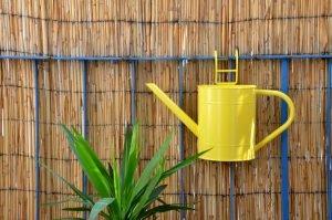 Bambusmatte als Sichtschutz