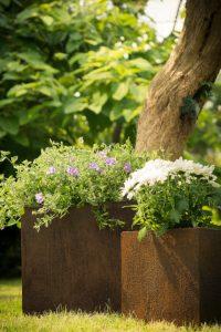 Blumentöpfe von Pflanzwerk